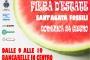Fiera d'estate - 24 giugno 2018 - Sant'Agata Fossili